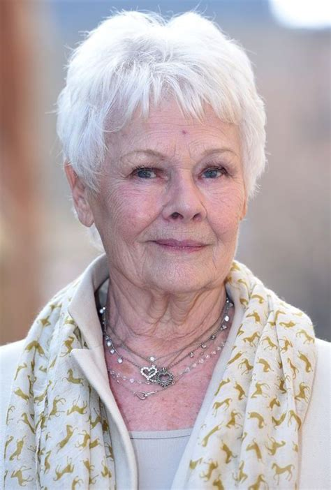 judy dench grey hairstyles the 25 best judi dench hairstyle ideas on pinterest