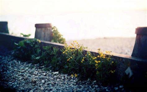 Landscape Photography Depth Of Field Depth Of Field Photography Landscape Www Imgkid