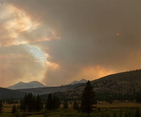 changes in yellowstone climate | rashid's blog