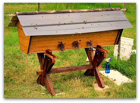 top bar bee hive beehive sequel deluxe top bar hive for my bees
