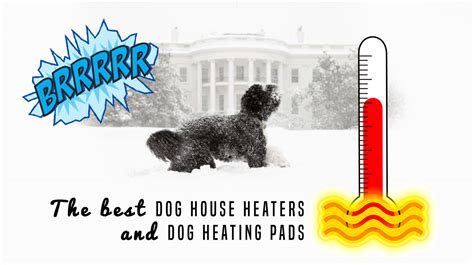 dog house heater pads best dog house heaters to keep dogs warm during winter