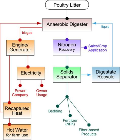 digestive system flow chart diagram 5 best images of digestion process chart digestive