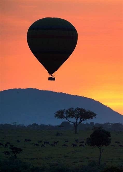 air balloon l 72 best images about a r t s i l h o u e t t e s on
