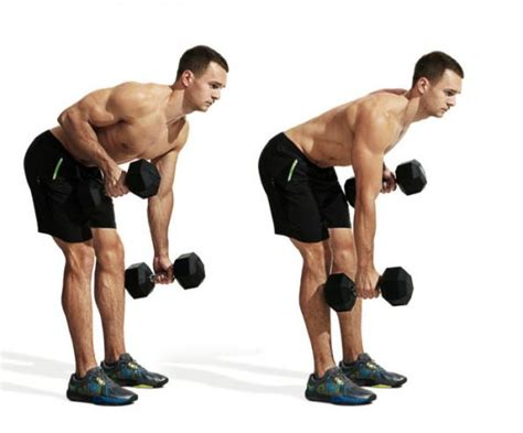 back workouts the 30 best back exercises of all time