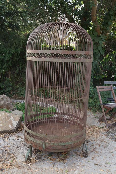 large bird cages large vintage bird cage