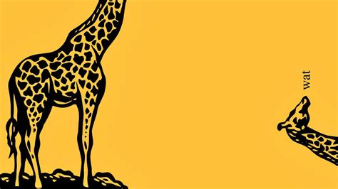 weird wallpaper tumblr funny giraffe wallpapers clipart best