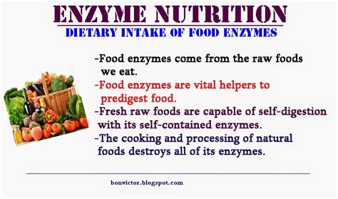enzyme inhibitors in food bonvictor blogspot com health benefits of food enzymes