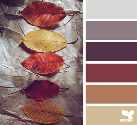design seeds instagram autumn hues design seeds