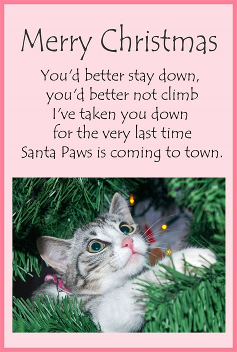 Printable Animal Christmas Cards   animal christmas cards