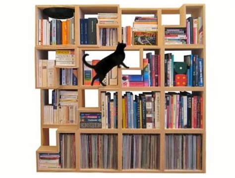 Cat Library A Feline Friendly Shelving System Kid Friendly Bookshelves