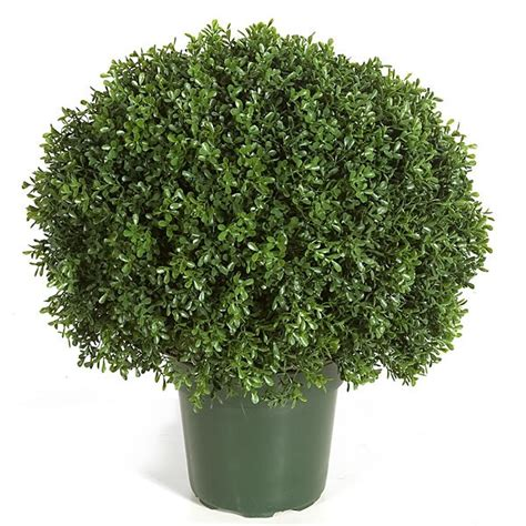 outdoor topiary plants artificial topiary trees outdoor topiary 20 inch tea