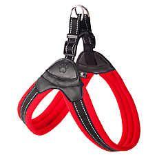 puppy harness petsmart collars harness leash petsmart