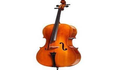 Senar Biola Vision Violin String keluarga biola artikel musik