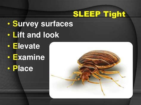 bed bug predators predators bed bugs scabies and more