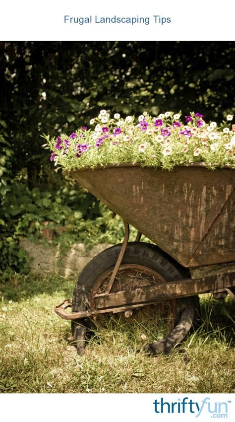 frugal landscaping tips thriftyfun