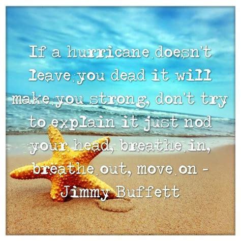 jimmy buffett quotes jimmy buffett quote anything about the