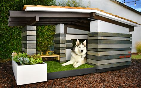 full house dog name modern dog house mid century ranch