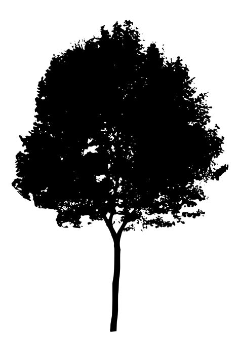 clipart tree silhouette 7