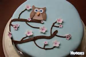 cherry blossom owl cake huggies birthday cake gallery huggies