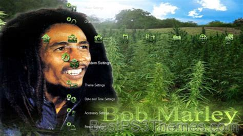 bob marley themes for nokia 2690 404 not found