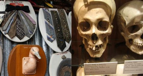 8 Wacky Museums From Around The World by Museums The 21 Strangest Around The World