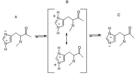 Histidine Protonation by Get To Histidine