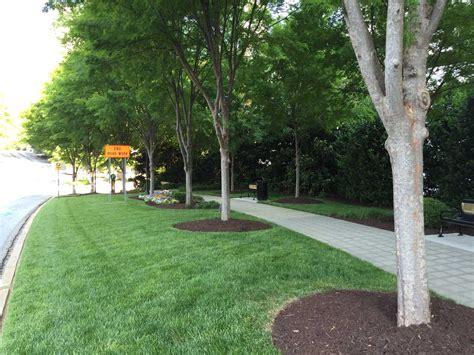 landscape maintenance services office landscape maintenance 2 service commercial landscape maintenance contractor