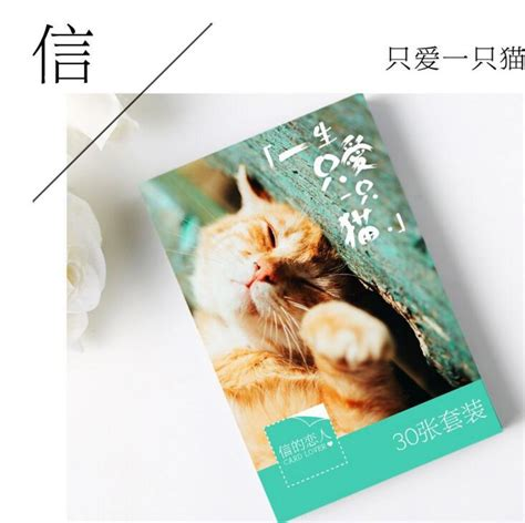 Post Card Cat Greeting Card Sno038 aliexpress buy 30 pcs pack the only cat i greeting card postcard birthday letter