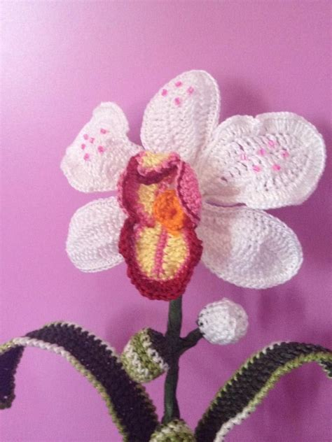 Kruissteek Kristik Orchid Motif Bunga 5 215 best images about orchidee uncinetto on orchid flowers orchid plants and patterns