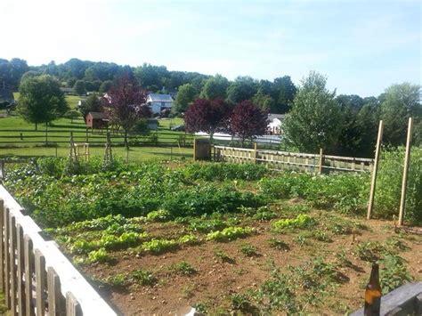 Large Vegetable Garden Layout In Full Bloom Ideas For Large Vegetable Garden