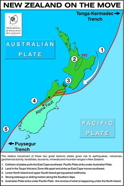 move to new zealand for a year taupo rising and falling media releases news and
