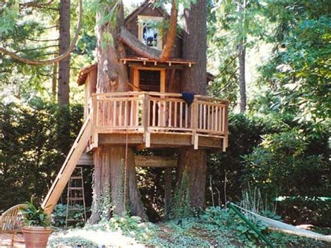 kids tree houses designs 50 kids treehouse designs