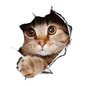 home wall art stickers the cute cats sticker wallstickersfun