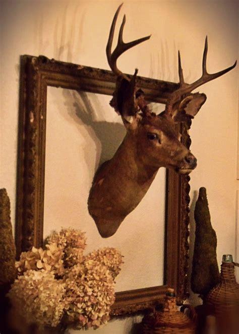 best 25 deer decor ideas on deer heads