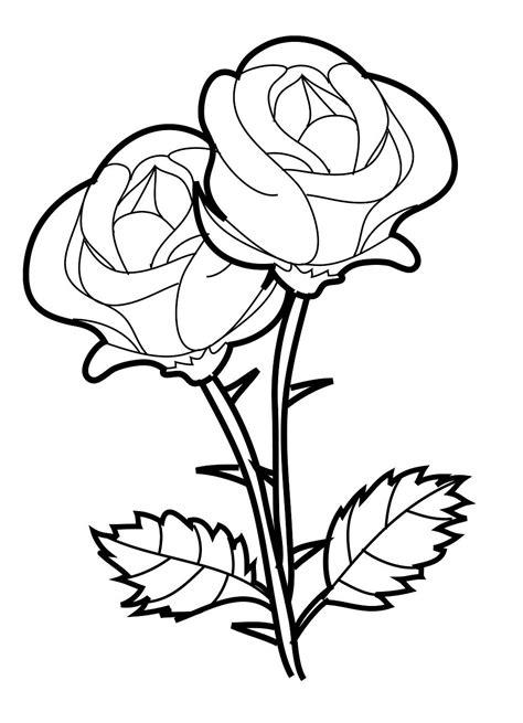 mewarnai gambar bunga mawar kreasi warna