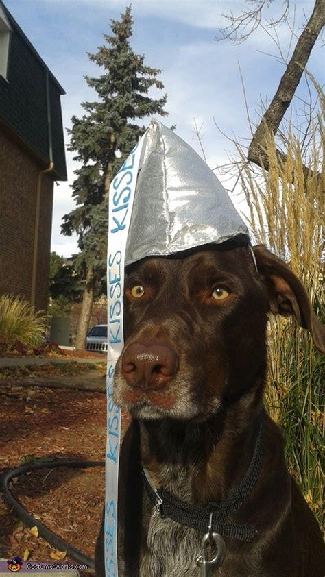 chocolate hershey kiss dog costume photo