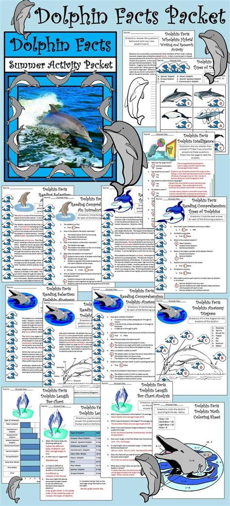25 best ideas about marine biology on marine biology careers marine biology