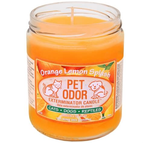 pet odor exterminator candle orange lemon splash jar