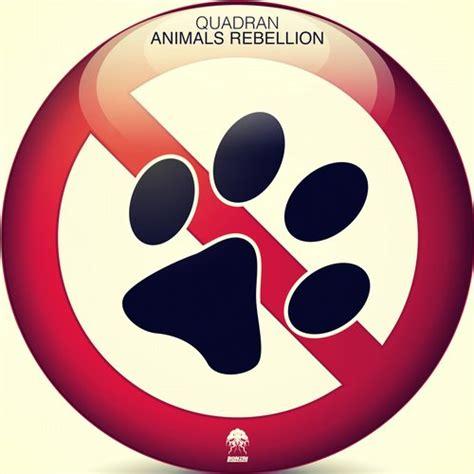 anima andai mix dj biyan quadran animals rebellion bonzai progressive brian s