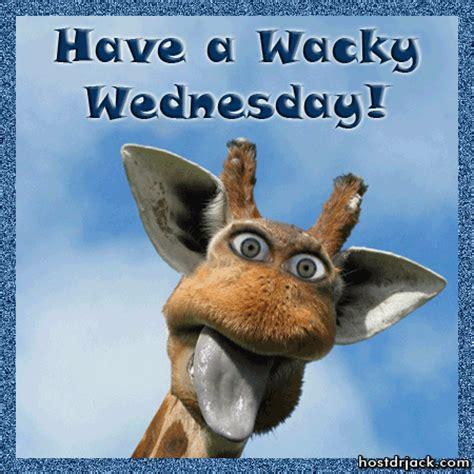 Wednesday Funny Meme - wacky blak whyte