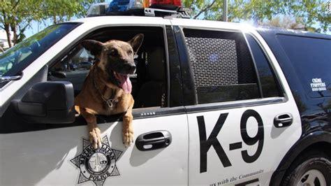big dogs las vegas two dead killed after las vegas gunfight cnn