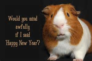 scotland s hogmanay for new year s cheer quillcards blog