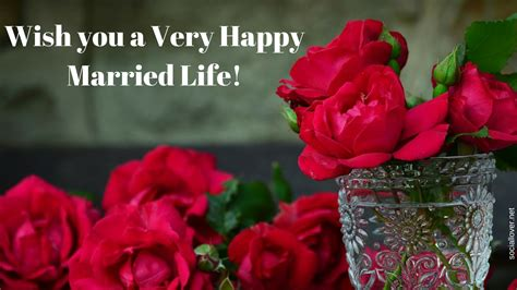 happy married life wedding day pictures  wishes  quotes social lover