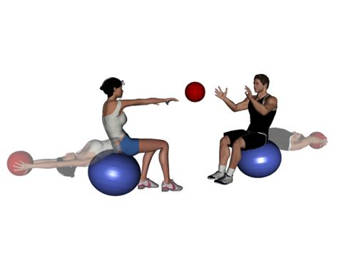 stability exercises stability partner drill