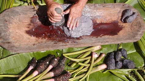 hawaiian poi hana festival to celebrate taro and poi la times