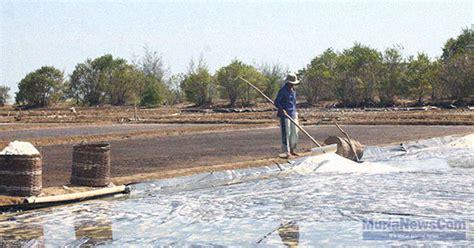 Plastik Jepara petani garam jepara harapkan bantuan plastik geo membran