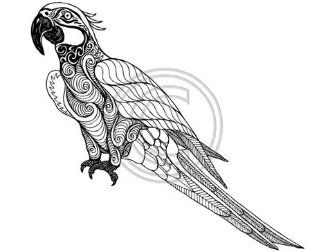 194 best Zentangle Birds images on Pinterest   Mandalas