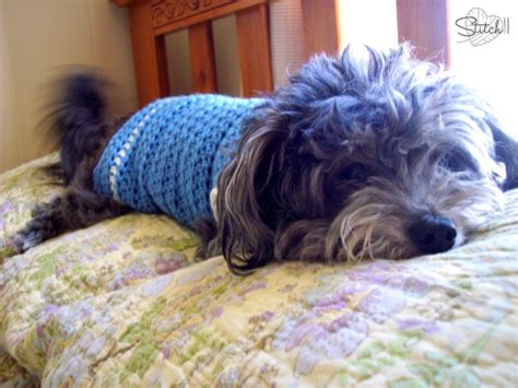 free small dogs dress up your pet day 2015 roundup of 10 free crochet patterns underground crafter