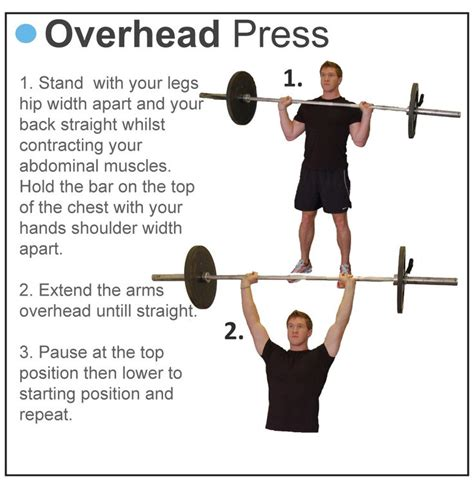 overhead press bench press overhead press train pinterest