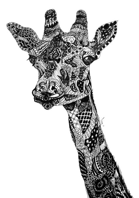 zentangle pattern giraffe iclimbpyramids zentangle giraffe by me another